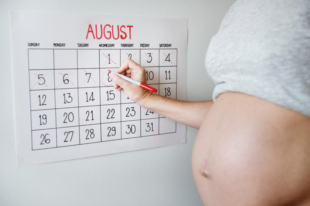 buy rent breast pump calender